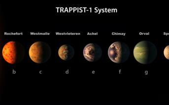 Trappist-1 System